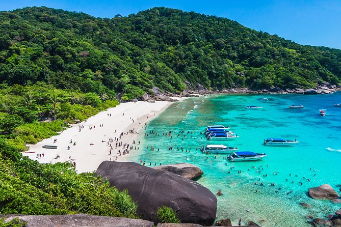 Similan Islands by Speedboat Full Day (With Lunch) photo 7