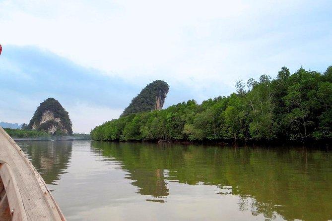 Mangrove Boat Tour in Krabi