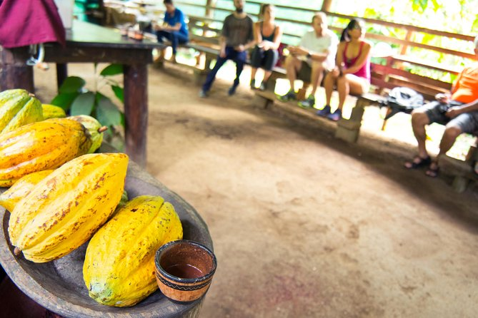 Half Day Nature Safari Float Tour and Chocolate Tour from La Fortuna-Arenal photo 8