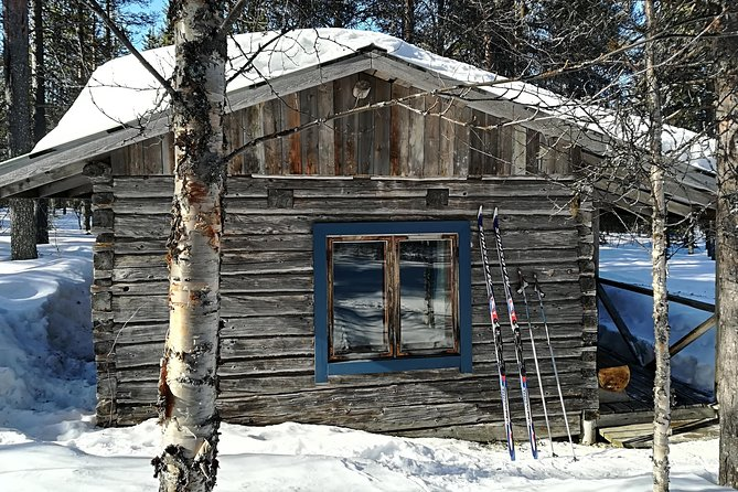 Unique wilderness cabin excursion