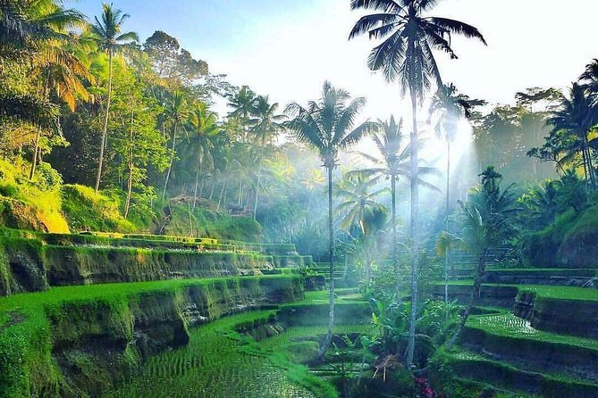 "Private All Around 4 Days Bali Tour "" Complete Tours"""