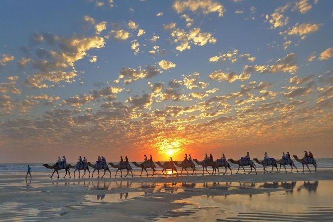 1 Hour Broome Sunset Camel Tour