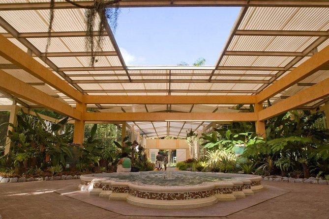 Rio de Janeiro Botanical Garden Admission Ticket
