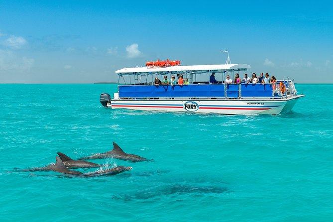 Key West with Dolphin Snorkel Option