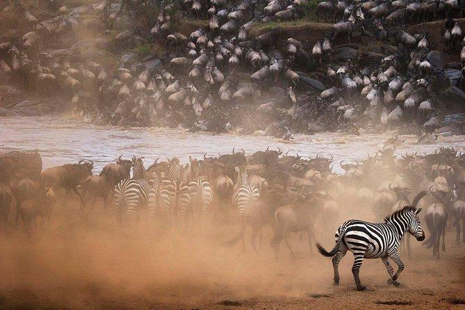 Spectacular Serengeti Safari