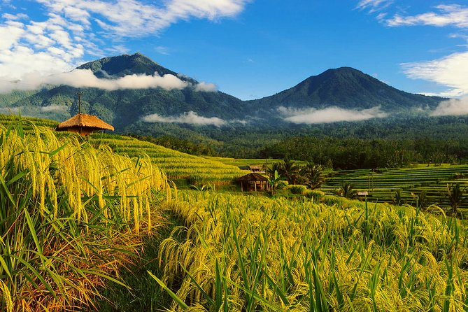 Best Instagram Tour in Northern Bali: Waterfalls and Temples