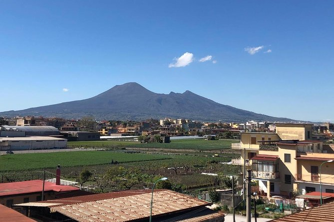 Sip Wine & Paint Vesuvius from a Terrace