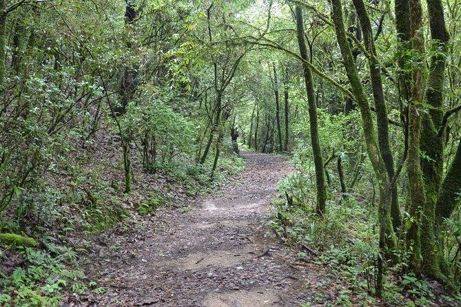 Shivapuri National Park Day Hiking - Budanilkantha, Nagi Gumba, Sundarijal Hike