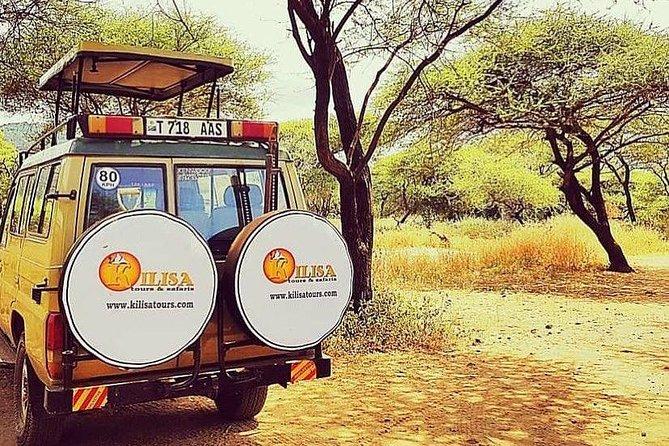 5 days Safari to Tarangire, Ngorongoro, Serengeti and Lake Manyara