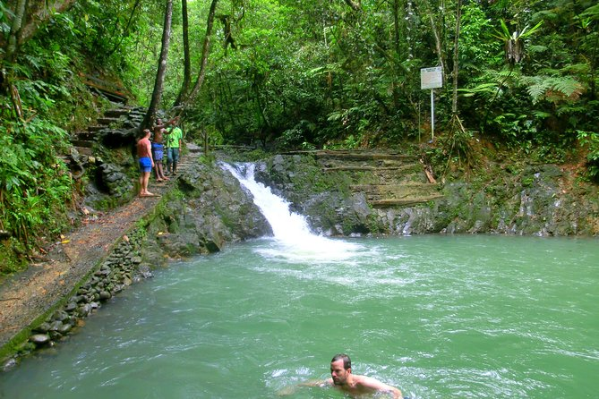 Suva Nature and Waterfall tour photo 4