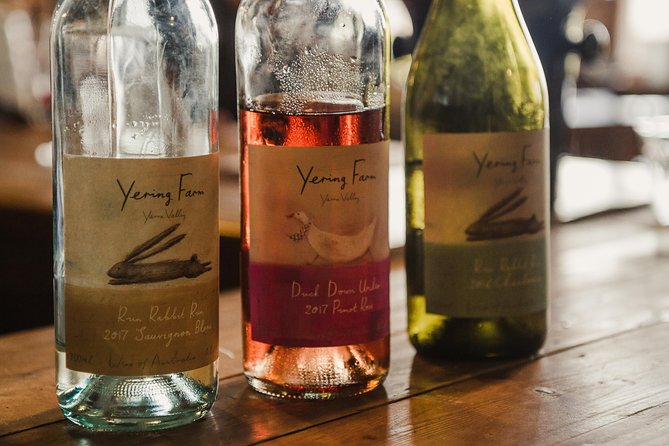 Yarra Valley Day Tour with Healesville Village Visit and Wine Tasting