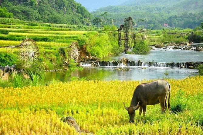 Mai Chau 1 Day Tour From Hanoi