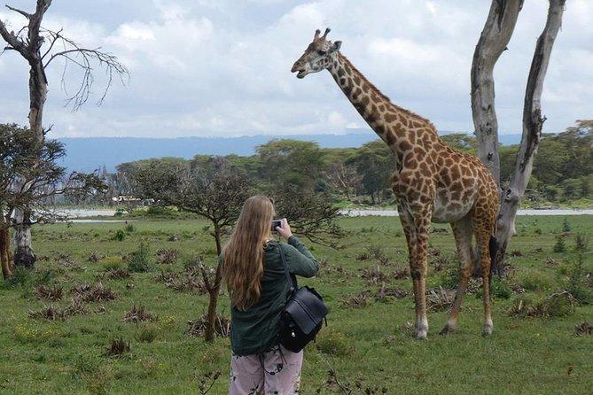 3 Days Nairobi National Park,Lake Naivasha &Lake Nakuru National Park