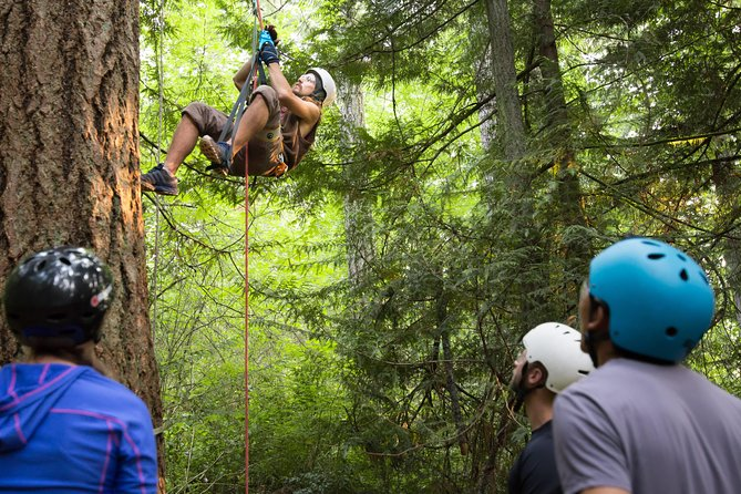 3 Day Canopy Tree Climbing Academy