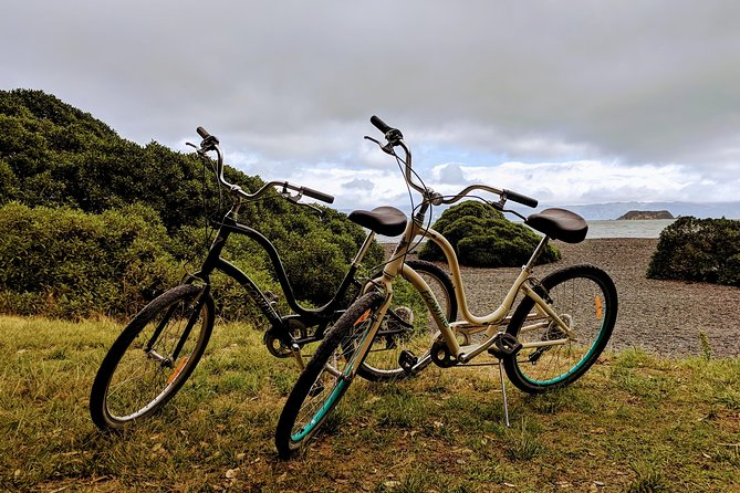 2 Hour Comfort Cruiser Bike Hire