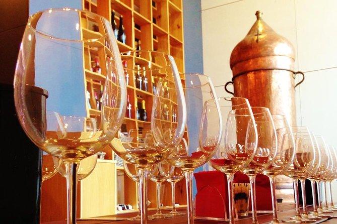 Wine Tour & Premium Wine Tasting - Quinta de Santa Cristina Wine Estate