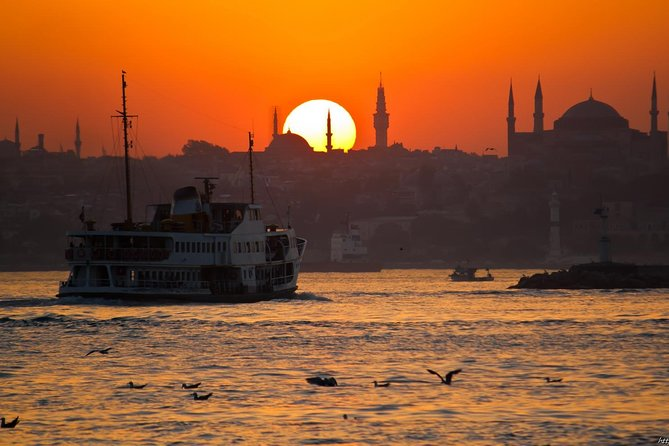 Bosphorus Night Cruise by a Private boat Balik-Ekmek (Fish & Chips)