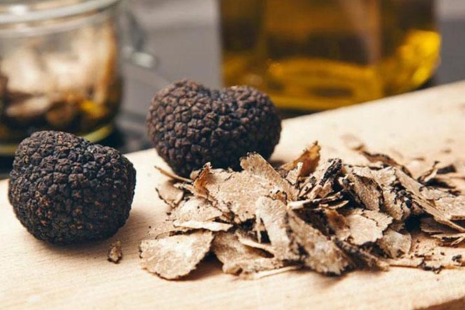 Truffle Hunting & Wine Tasting In Istria (private V.i.p. Tour)