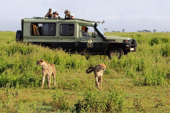 3 Day Best Camping Safari in Tanzania Parks