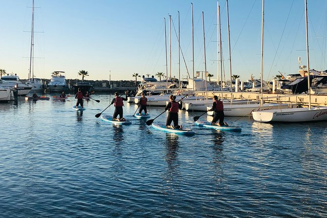 SUP Excursion in Palma photo 3