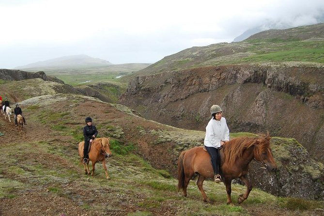 Viking Horse Riding and Golden Circle Tour from Reykjavik photo 13