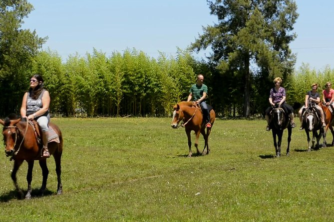 Gaucho Day Trip from Buenos Aires: Don Silvano Ranch photo 6