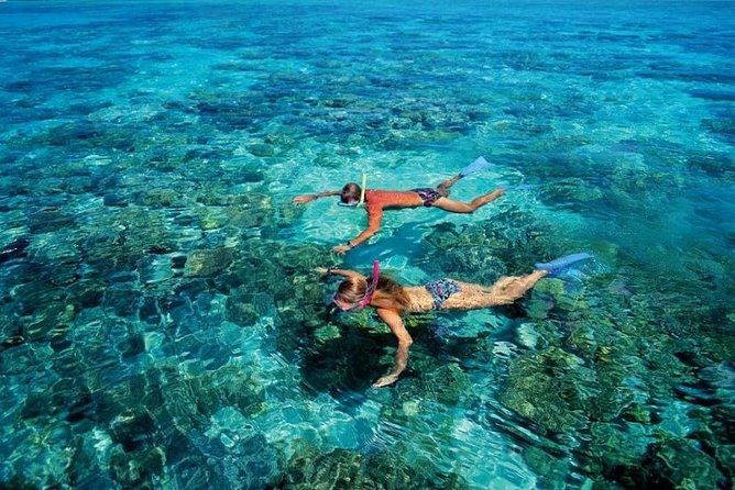 Blue Lagoon Surf & Turf