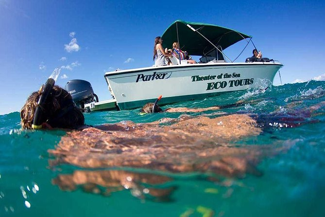 Eco-Adventure and Snorkel Cruise