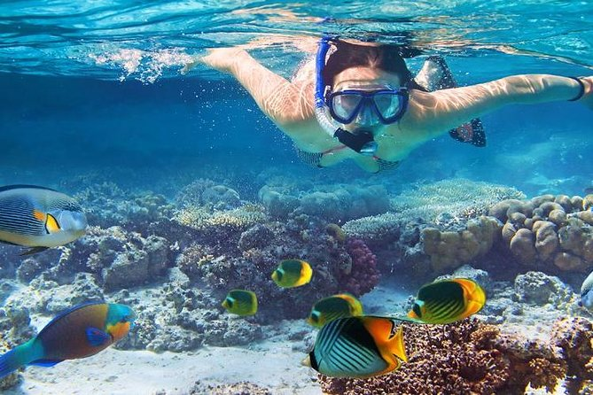 Day trip to playa blanca with snorkel