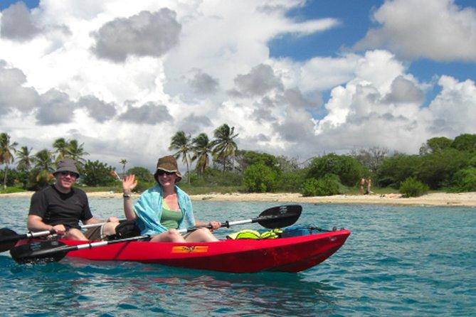 Mangrove Clear Bottom Kayaking