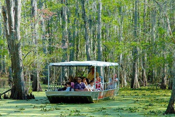 New Orleans Swamp and Bayou Boat Tour with Transportation