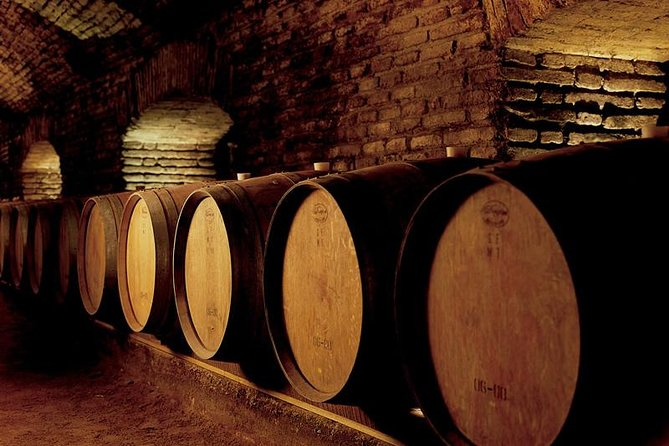 Concha y Toro Winery Half-Day Tour