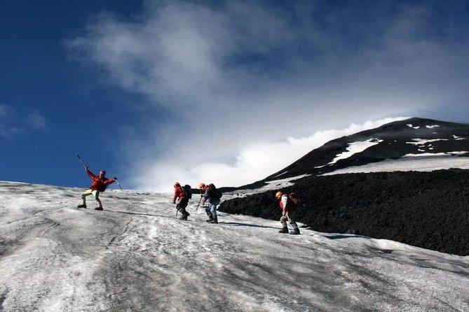 プコン:終日ビヤリカ火山トレッキングツアー