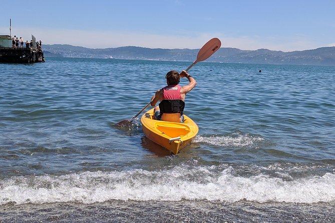 1 hora de alquiler de kayak individual