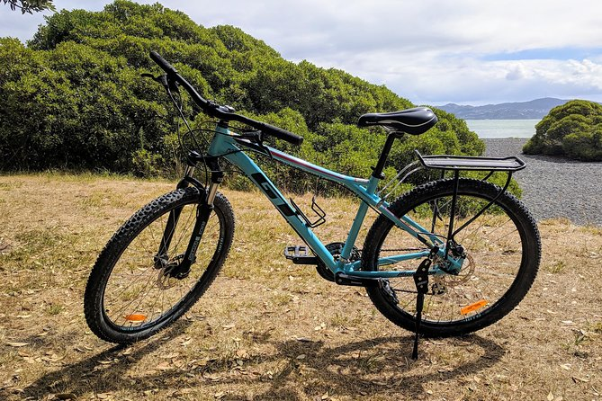 4 Hour Comfort Mountain Bike Hire