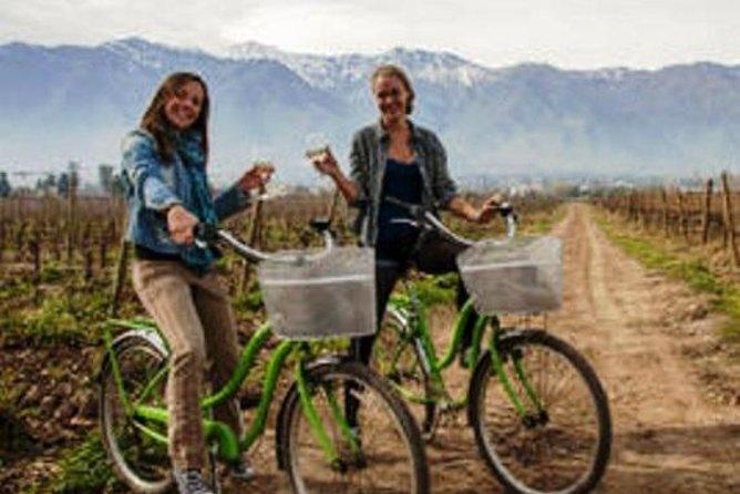 Bike and Wine Tour Half Day Maipo Valley