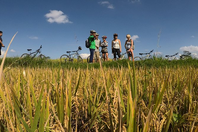Explore Ubud with Electric Bike