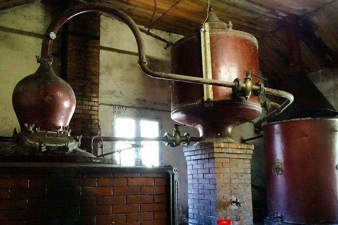Private tour from Cognac - Cognac Distillery & Bordeaux Winery with a workshop