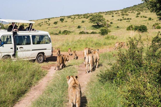 7 Days Best Of Kenya Camping Safari