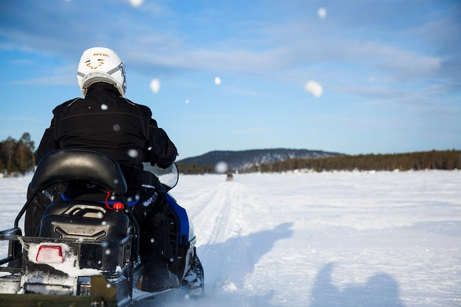 Snowmobile Safari to visit Reindeers at Wilderness camp, including lunch