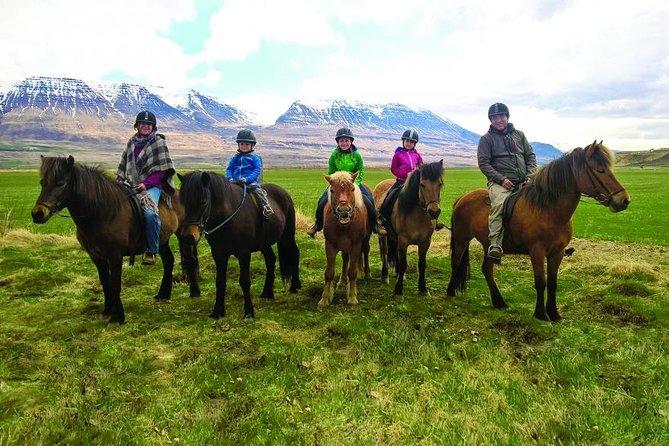Balade à cheval en famille à Skagafjörður
