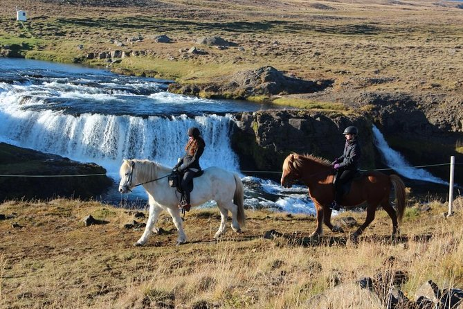Horse Riding Tour to the Glacier River Delta with Waterfall - 3 hours photo 16