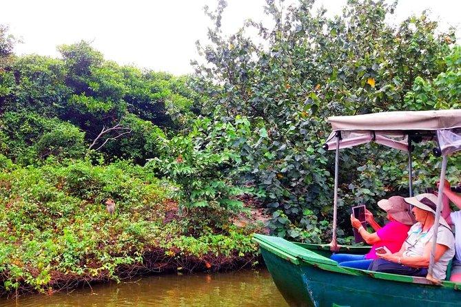 Private Muthurajawela Marsh Boat Safari