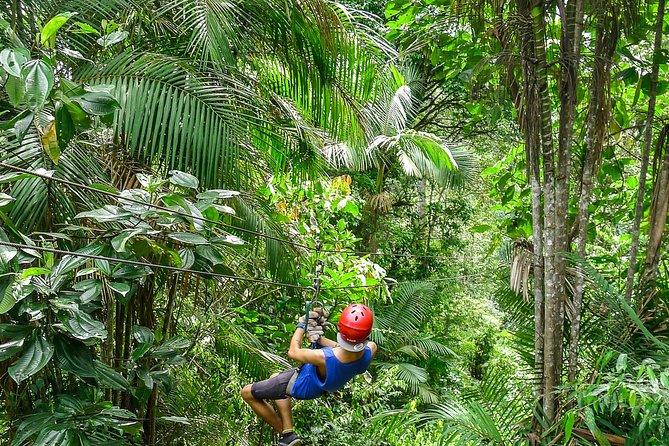 Excursão Privada Mindo Ziplining, Degustação de Chocolate e Museu do Equador