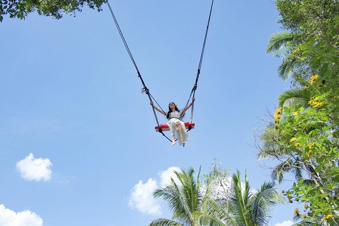 Tegenungan Waterfall, Bali Swing and Traditional Village Visit Day Tour