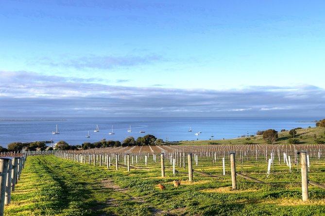 Kangaroo Island Shore Excursion Eten en wijn Trail Tour