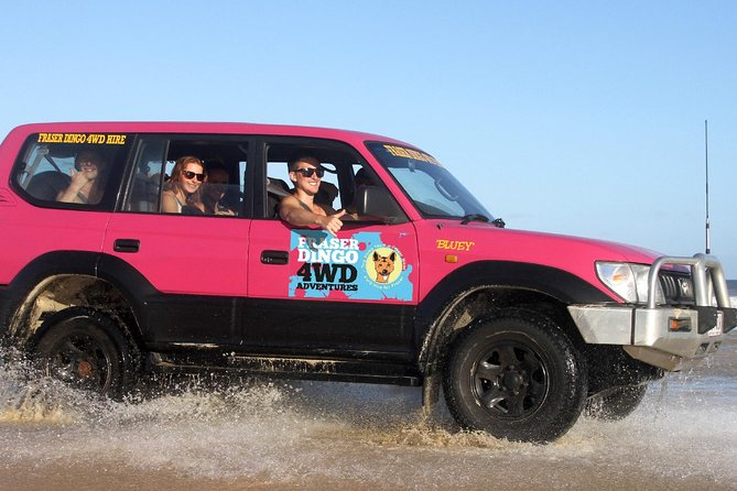 2-Day Fraser Island 4WD Tag-Along Tour at Beach House from Hervey Bay