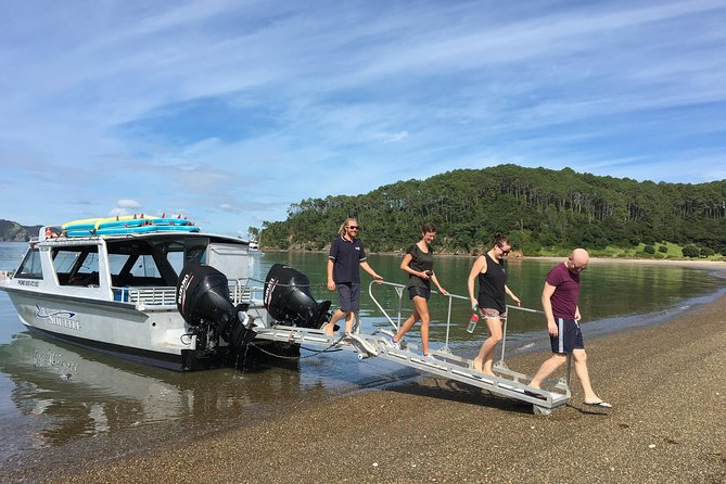 Cruise Ship Excursion Option - 5 Hour Bay of Islands Cruise & Island Day Tour