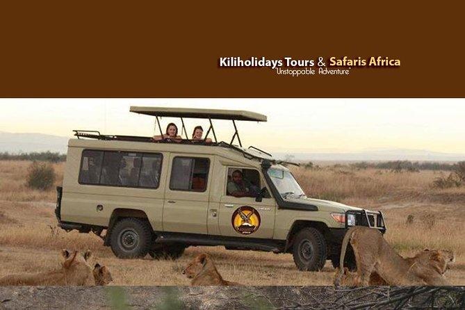 Majestic Tanzania safari- 6 days