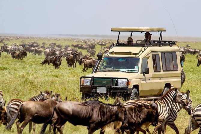 Tanzania Excellent Camping Safari-5 days
